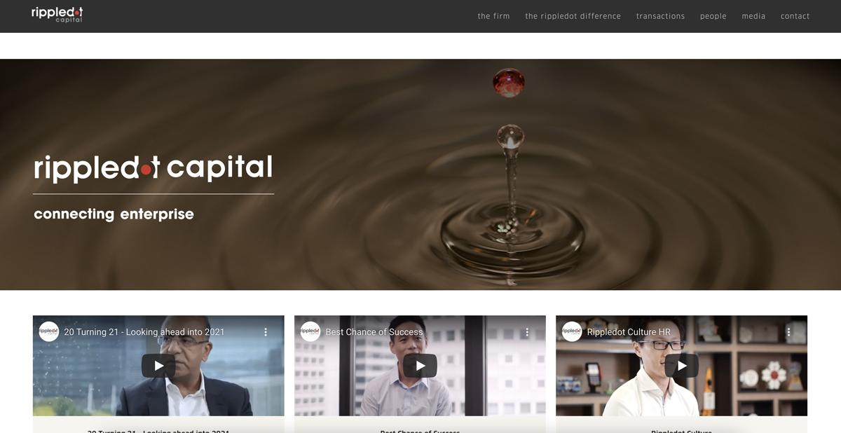 UX UI / Custom Theme Web Development for Rippledot Capital, a capital firm company
